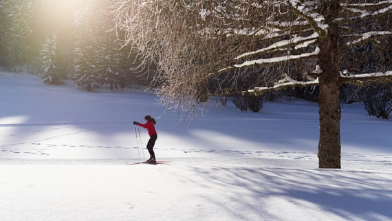 Natural experience of cross-country skiing